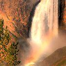 Yellowstone by joe gooding