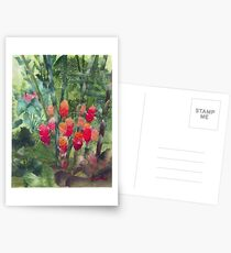 Beehive Ginger Postcards