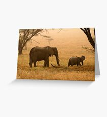 Elephants in the Dust Greeting Card