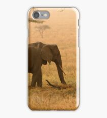 Elephants in the Dust iPhone Case/Skin