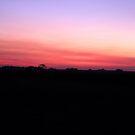 Sunrise on the Serengeti by David McGilchrist
