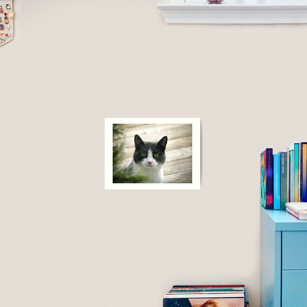 Nobody Knows the Troubles I've Seen Art Print