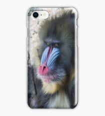 Baboon! iPhone Case/Skin