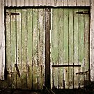 Shed Doors by Kerrod Sulter