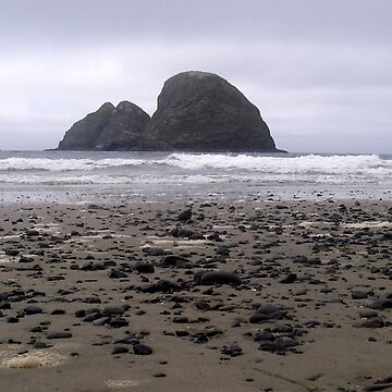Oregon coast by hannah109