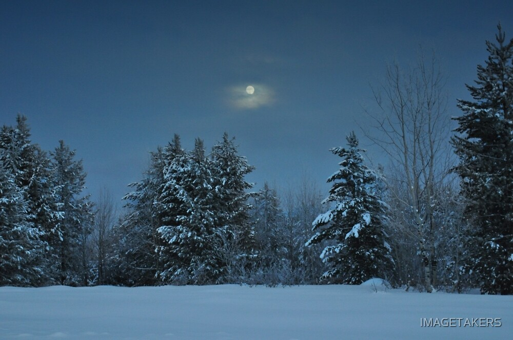 Winter Moon Shine Over Island Park by IMAGETAKERS