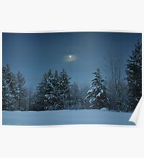 Winter Moon Shine Over Island Park Poster