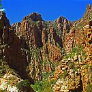 Swartberg Pass - South Africa by Bev Pascoe