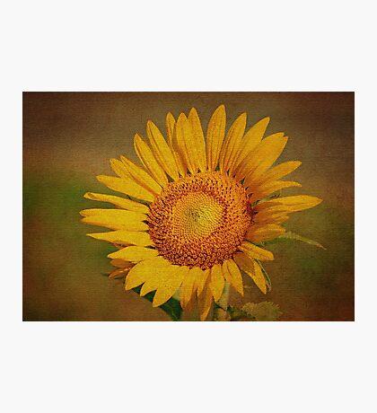 Big Yellow Photographic Print