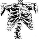 Sketchy Bones by Jay Brushett