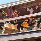 Lively balcony by Mike Shell