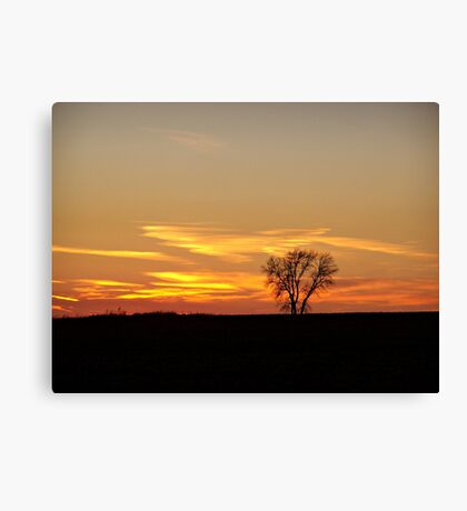 Solitary Moment Canvas Print