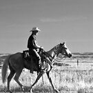 Marlboro Country by Tim Denny