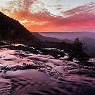 Springbrook Sunset by D Byrne