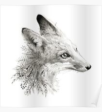 A Young Fox Poster