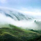 Morning Fog on Mission Peak von Ellen Cotton