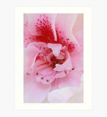 1st day of spring (sooc) Art Print