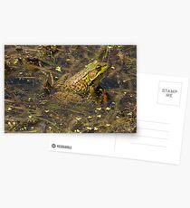 Frogger Postcards