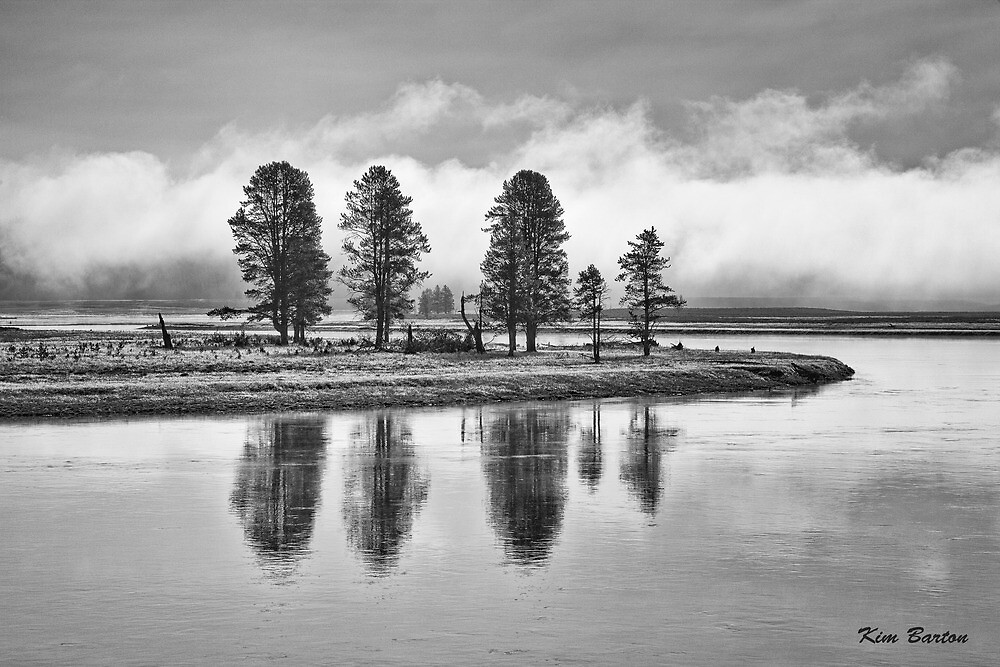 Yellowstone Reflections by Kim Barton