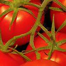 tomatoes by Cheryl Ribeiro