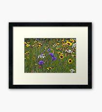 English Meadow # 3 Framed Print