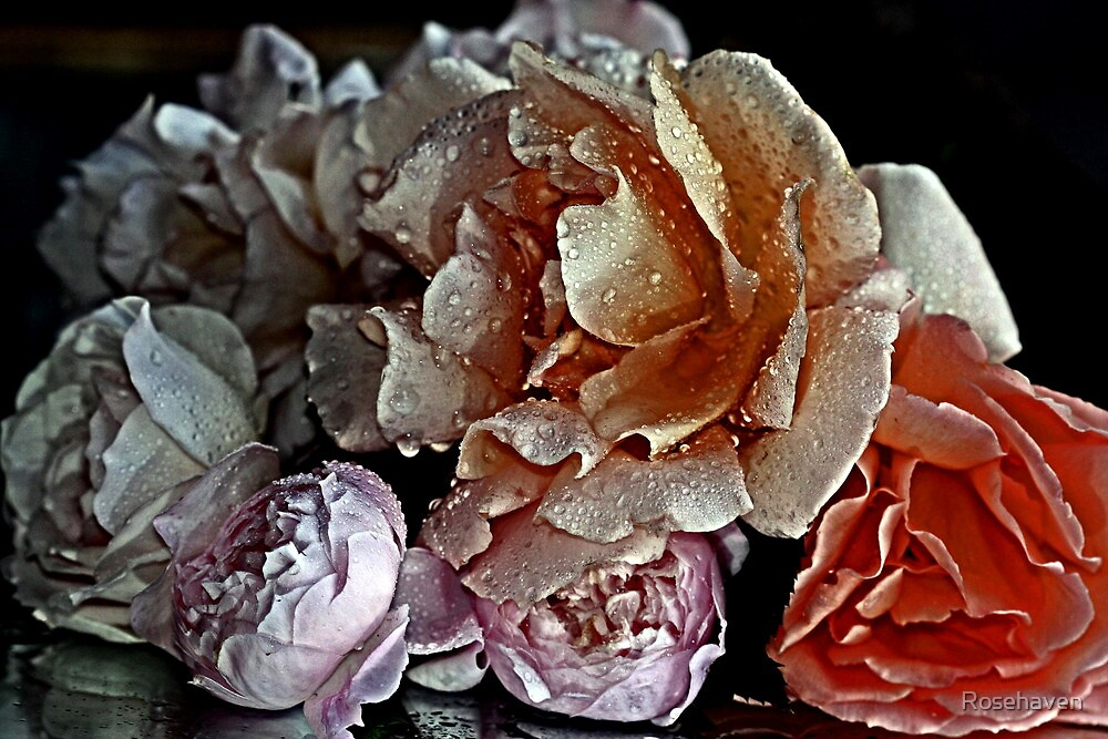 """""""A Simple Bouquet..."""" by Rosehaven"""