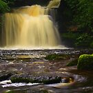 Cauldron Falls, 2 Walden Beck, North England  by Ian Alex Blease