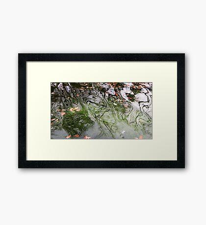 Green Water Framed Print