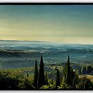 Sunrise in Tuscany by Philip Teale
