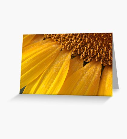 sunny pollen Greeting Card