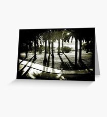 Palm Bosque at Dusk Greeting Card