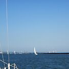 Sailing in a good wind, Buffalo harbor by Ray Vaughan