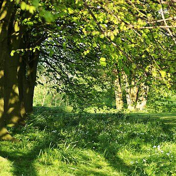 Mini Meadow by N-72
