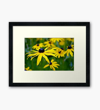 Stand Tall and Smile Framed Print