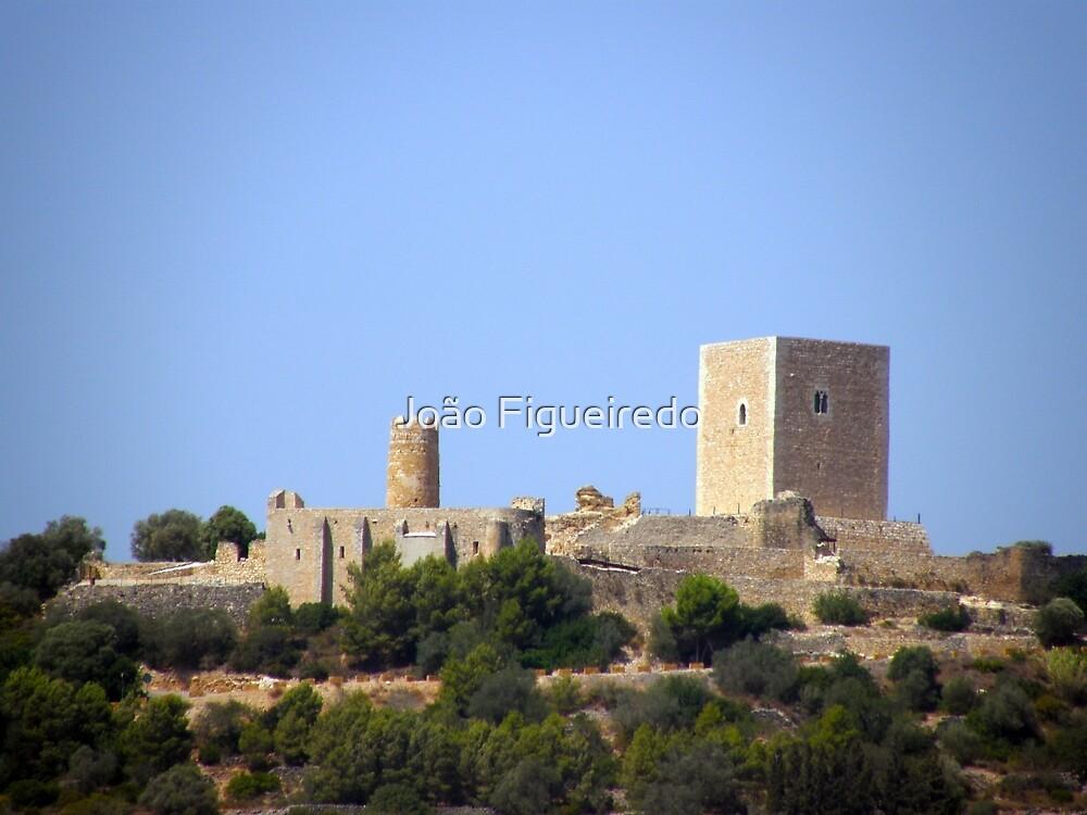 Castell d'Ulldecona by João Figueiredo