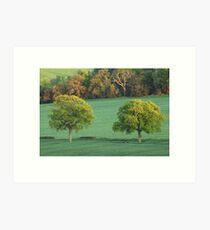 Two Trees, Newlands Corner, Surrey Art Print