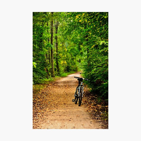 The Bike on the Towpath Photographic Print