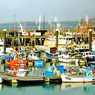 Newlin Harbour by newbeltane