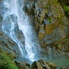 Base of Ellenborough Falls by Penny Smith