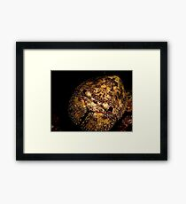 Pink Eye Liner Framed Print