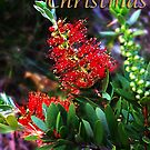Merry Christmas Bottlebrush Card by JuliaKHarwood
