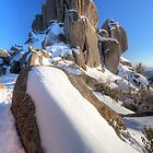 Mt Buffalo - Cathedral Rock by Richard  Cubitt