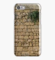 Life on Bare Rock - Up High on the Fortification Wall iPhone Case/Skin
