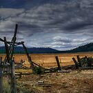 To Hold The Past by Charles & Patricia   Harkins ~ Picture Oregon