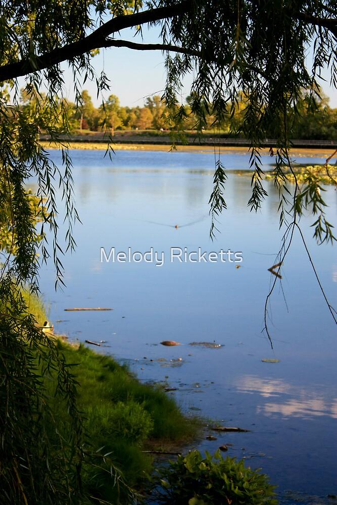 North Bay View by Melody Ricketts