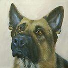 German Shepherd by Carole Russell