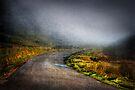 Mystery Road by Svetlana Sewell