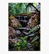water fall stream Photographic Print