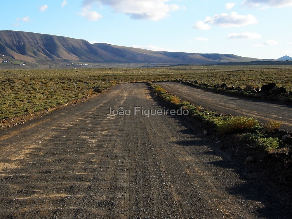 The road is uncertain / Road to no where by João Figueiredo