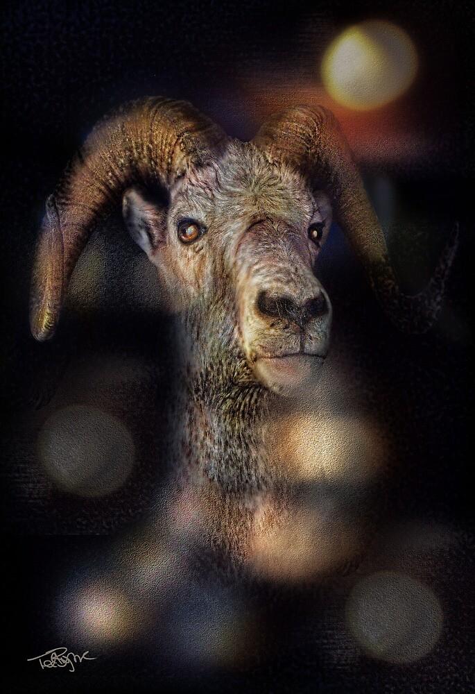 Ram by Ted Byrne
